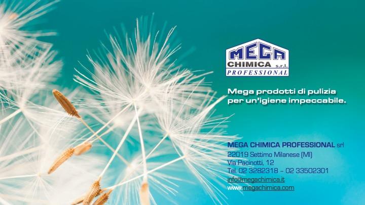 Mega Chimica Professional fornisce i professionisti del pulito.